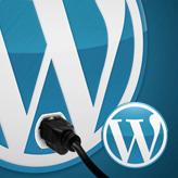 Best WordPress Plugins for Content Creators