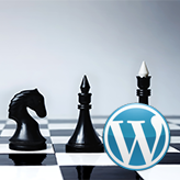 WordPress-Blogging-themes.-How-to-manage-blocks-positions-in-Power-Builder