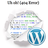 WordPress Blogging themes. How to customize 404 page