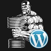 Temas Blogging de WordPress. Cómo actualizar el plugin Power Builder manualmente
