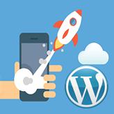 How to setup Google AMP on your WordPress Website