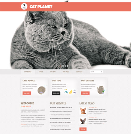 Free Cherry WordPress Cat Planet Theme p 14012013